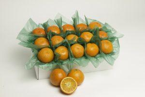 Temples Oranges