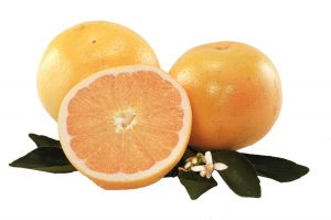 Golden White Grapefruit