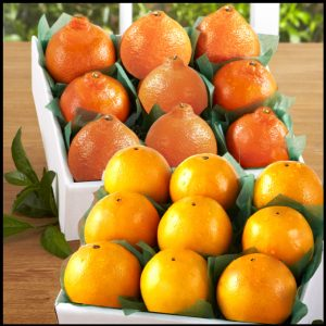 navels-honeybells-9pack__20058.1472086339.1280.1280