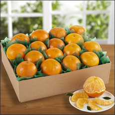 tray_of_temple_oranges__72720.1424890157.231.231
