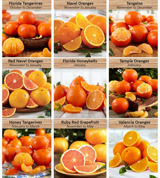 fruit-sampler-image__80728.1474404218.1280.1280