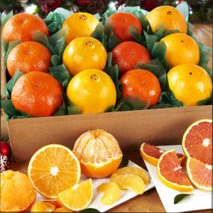 4_orange_variety_box__30303.1444057563.1280.1280