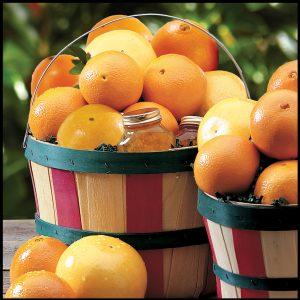 florida-grove-basket__40493.1509052807.1280.1280
